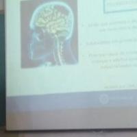 Estagiários de Fisioterapia do HMGV defendem estudos de caso na Unisinos
